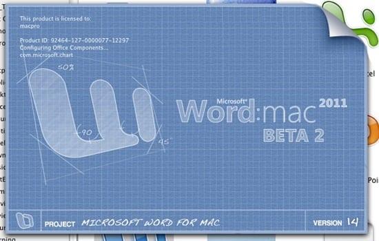 Microsoft Wordssumercap001