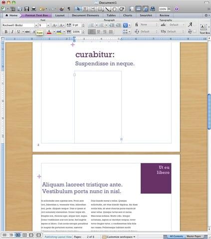 Microsoft Wordssumercap003