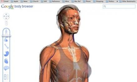 [가이드] 구글 3D 인체 브라우저 사용하기