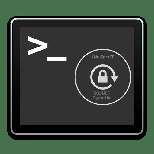 terminal_ico_web